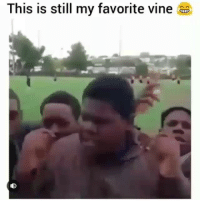 Funny, Vine, and Day: This is still my favorite vine Classic clip of the day😂