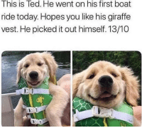 Ted, Thank You, and Giraffe: This is Ted. He went on his first boat  ride today. Hopes you like his giraffe  vest. He picked it out himself. 13/10  rt Thank you for coming to my Ted Talk