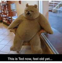 Morning IG! THANK YOU for 14k!! @funnycahitstrue: This is Ted now, feel old yet... Morning IG! THANK YOU for 14k!! @funnycahitstrue