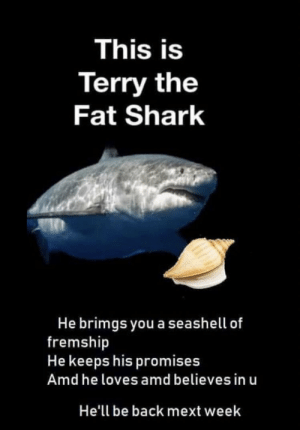 https://t.co/VE9uceYC3X: This is  Terry the  Fat Shark  He brimgs you a seashell of  fremship  He keeps his promises  Amd he loves amd believes in u  He'll be back mext week https://t.co/VE9uceYC3X