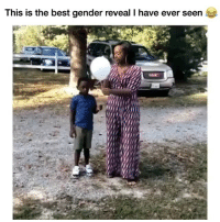 Memes, Best, and Amazing: This is the best gender reveal T have ever seen This is amazing 🤣💙💞