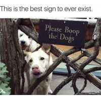 Boo, Best, and Boop: This is the best sign to ever exist.  Piease Boo  e Doos <p>PLEASE BOOP</p>