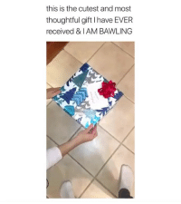 Cute, Memes, and 🤖: this is the cutest and most  thoughtful gift I have EVER  received & I AM BAWLING This is too cute! ❤️ (contact us at partner@memes.com for credit-removal)