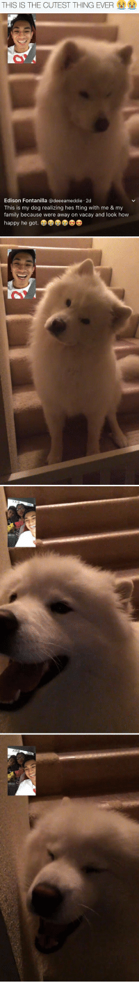 Family, Edison, and Happy: THIS IS THE CUTEST THING EVER   Edison Fontanilla @deeeameddie.2d  This is my dog realizing hes fting with me & my  family because were away on vacay and look how  happy he got.