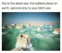 Memes, Smell, and Earth: this is the dead sea, the saltiest place on  earth, second only to your bitch ass Making homemade monkeybread with my mom right now and the house smells fucking delicious 😏😏😏