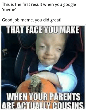 Sweet Home Alabama: This is the first result when you google  meme  Good job meme, you did great!  THAT FACE YOU MAKE  WHEN YOUR PARENTS Sweet Home Alabama