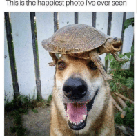 Smile, Photo, and This: This is the happiest photo i've ever seen everyone smile