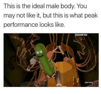 @rickdemption great meme follow @rickmortymemes (me) for more! 🍑: This is the ideal male body. You  may not like it, but this is what peak  performance looks like.  RICKDEMPTION  [odult  ladult swim) @rickdemption great meme follow @rickmortymemes (me) for more! 🍑