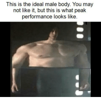 Ideal Male Body: This is the ideal male body. You may  not like it, but this is what peak  performance looks like.