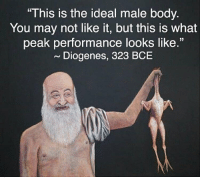 """Ideal Male Body: This is the ideal male body.  You may not like it, but this is what  peak performance looks like.""""  ~ Diogenes, 323 BCE"""