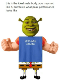 ideal male body: this is the ideal male body. you may not  like it, but this is what peak performance  looks like  ZOO-WEE ideal male body