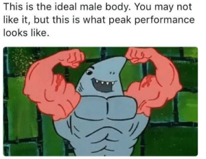 May, You, and Ideal: This is the ideal male body. You may not  like it, but this is what peak performance  looks like And for the ladies, hairy