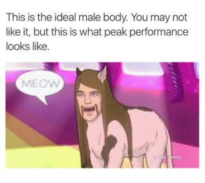 Ideal Male Body: This is the ideal male body. You may not  like it, but this is what peak performance  looks like.  MEOW