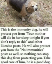 """Memes, Good, and Http: This is the immunity dog, he will  protect you from """"Your mother  will die in her sleep tonight if you  don't reply to this"""" and other  likewise posts. He will also protect  you from the """"No immunities""""  posts as well, so nothing can stop  this dog from protecting you. Take  good care of him, he is a good dog. <p>Doggo is good doggo via /r/memes <a href=""""http://ift.tt/2hNMLC7"""">http://ift.tt/2hNMLC7</a></p>"""