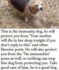 "doggos-with-jobs:Immunity Dog (meme): This is the immunity dog, he will  protect you from ""Your mother  will die in her sleep tonight if you  don't reply to this"" and other  likewise posts. He will also protect  vou from the ""No immunities  posts as well, so nothing can stop  this dog from protecting you. Take  good care of him, he is a good dog  It doggos-with-jobs:Immunity Dog (meme)"