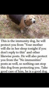 "Thank You, Good, and Sleep: This is the immunity dog, he will  protect you from ""Your mother  will die in her sleep tonight if you  don't reply to this"" and other  likewise posts. He will also protect  you from the ""No immunities""  posts as well, so nothing can stop  this dog from protecting you. Take  good care of him, he is a good dog Ah thank you😊"