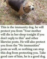 "Good, Http, and Sleep: This is the immunity dog, he will  protect you from ""Your mother  will die in her sleep tonight if you  don't reply to this"" and other  likewise posts. He will also protect  you from the ""No immunities""  posts as well, so nothing can stop  this dog from protecting you. Take  good care of him, he is a good dog. This immunity dogo is back to protecc us via /r/wholesomememes http://bit.ly/2CFok4P"