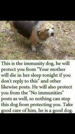 "My moms already sick so not taking any chances: This is the immunity dog, he will  protect you from ""Your mother  will die in her sleep tonight if you  don't reply to this"" and other  likewise posts. He will also protect  you from the ""No immunities""  posts as well, so nothing can stop  this dog from protecting you. Take  good care of him, he is a good dog. My moms already sick so not taking any chances"