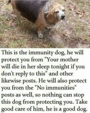 "phoenix-ace:  Since people still want to pass around those ""reblog or else"" posts.: This is the immunity dog, he will  protect you from ""Your mother  will die in her sleep tonight if you  don't reply to this"" and other  likewise posts. He will also protect  you from the ""No immunities""  posts as well, so nothing can stop  this dog from protecting you. Take  good  care of him, he is a good dog. phoenix-ace:  Since people still want to pass around those ""reblog or else"" posts."