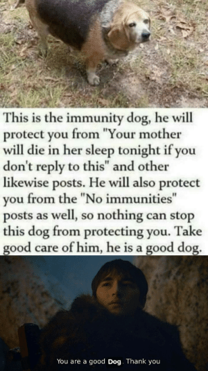 "Good dog: This is the immunity dog, he will  protect you from ""Your mother  will die in her sleep tonight if you  don't reply to this"" and other  likewise posts. He will also protect  from the ""No immunities""  you  posts as well, so nothing can stop  this dog from protecting you.  good care of him, he is a good dog.  Take  You are a good Dog. Thank you Good dog"