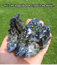 Tumblr, Blog, and Http: This is the largest Bismuth Crystal in the World... lolzandtrollz:  Bismuth Crystal