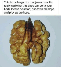 Dope, Weed, and Marijuana: This is the lungs of a marijuana user. It's  really sad what this dope can do to your  body. Please be smart, put down the dope  and pick up the hope. dafuq is this... 🤦‍♂️ @marijuana