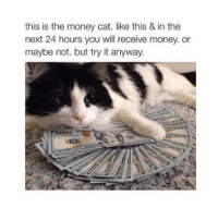 $$$$$$$: this is the money cat. like this & in the  next 24 hours you will receive money. or  maybe not. but try it anyway. $$$$$$$