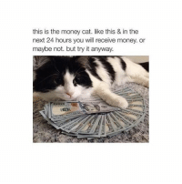 it's WOrth a shot: this is the money cat. like this & in the  next 24 hours you will receive money or  maybe not. but try it anyway. it's WOrth a shot