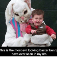 This is the most evil looking Easter bunny  have ever seen in my life. No wonder the kid is scared.