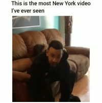 Af, Funny, and Lmao: This is the most New York video  l've ever seen Lmao bruhhh accurate af 😂💀😂💀😂💀 @chicklet.hf HoodClips