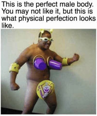 Ideal Male Body: This is the perfect male body.  You may not like it, but this is  what physical perfection looks  like