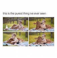 Cute, Girl Memes, and Baby: this is the purest thing ive ever seen cute baby