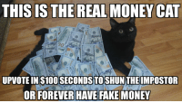 Me😾irl: THIS IS THE REAL MONEY CAT  UPVOTE IN S100 SECONDSITOSHUN THEIMPOSTOR  OR FOREVER HAVE FAKE MONEY Me😾irl