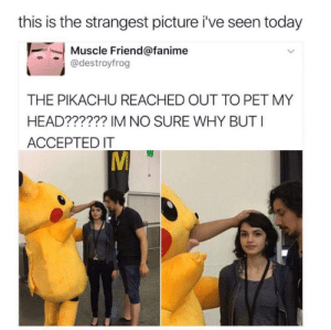 Jerking it with the other hand. Wanted contact at climax, didn't want to be an overt creep. via /r/memes https://ift.tt/2LXZ0g6: this is the strangest picture i've seen today  Muscle Friend@fanime  @destroyfrog  THE PIKACHU REACHED OUT TO PET MY  HEAD?????? IM NO SURE WHY BUTI  ACCEPTED IT Jerking it with the other hand. Wanted contact at climax, didn't want to be an overt creep. via /r/memes https://ift.tt/2LXZ0g6
