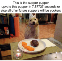 Future, Memes, and Via: This is the supper pupper  upvote this pupper in 7.87737 seconds or  else all of ur future suppers will be yuckers Praise be to the supper pupper via /r/memes https://ift.tt/2LtM7pB