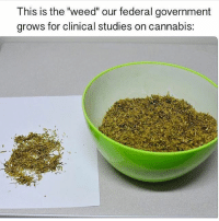 "Memes, Smh, and Weed: This is the ""weed our federal government  grows for clinical studies on cannabis: SMH 😏"