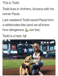 <p>Todd saved hooman from snek</p>: This is Todd  lodd lives in Anthem, Arizona with his  owner Paula.  Last weekend lodd saved Paula from  a rattlesnake bite (and we all know  how dangerous can be)  Todd is a hero.  CHASE  0  FIELD <p>Todd saved hooman from snek</p>