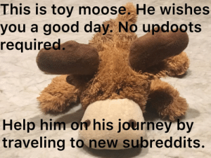 Have an amazing day: This is toy moose. He wishes  you a good day. No updoots  required.  Help him on his journey by  traveling to new subreddits. Have an amazing day