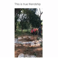 Memes, True, and Best: This is true friendship We all have a friend that would do this 😂 Via: @best_kitsada