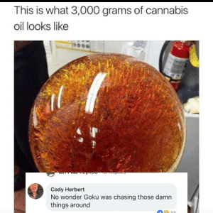 Goku, Memes, and Cannabis: This is what 3,000 grams of cannabis  oil looks like  Cody Herbert  No wonder Goku was chasing those damn  things around The more ya know via /r/memes https://ift.tt/2PvhUJ0