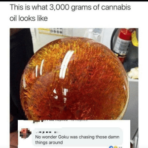 Goku, Shit, and Cannabis: This is what 3,000 grams of cannabis  oil looks like  No wonder Goku was chasing those damn  things around Shit, men.