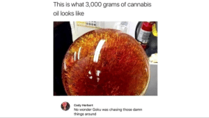 The truth of Goku.: This is what 3,000 grams of cannabis  oil looks like  Cody Herbert  No wonder Goku was chasing those damn  things around The truth of Goku.