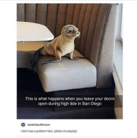 Memes, San Diego, and 🤖: This is what happens when you leave your doors  open during high tide in San Diego  to  tastefullyoffensive  I don't see a problem here. (photo via cruztec) @djbewbz is a must follow!!