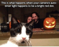 Memes, Camera, and 🤖: This is what happens when your camera's auto-  timer light happens to be a bright red dot.