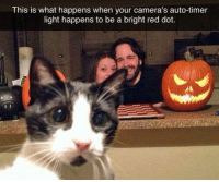 Memes, Camera, and Reds: This is what happens when your camera's auto-timer  light happens to be a bright red dot. 🐈  🐾 🎃 🐾 📷