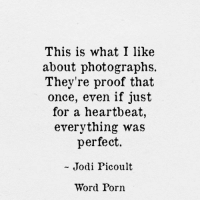 Porn, Word, and Proof: This is what I like  about photographs.  They're proof that  once, even if just  for a heartbeat,  everything was  perfect  Jodi Picoult  Word Porn Everything was perfect once…