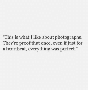 "Proof, Once, and What: ""This is what I like about photographs  They're proof that once, even if just for  a heartbeat, everything was perfect."""