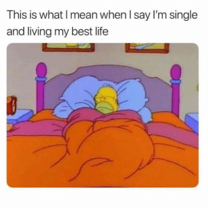 Dank, Life, and Best: This is what l mean when I say I'm single  and living my best life I see nothing wrong.
