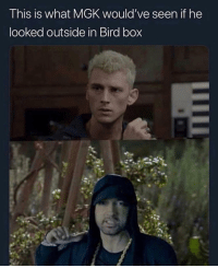 Only good bird box meme @kodakslawyer: This is what MGK would've seen if he  looked outside in Bird box Only good bird box meme @kodakslawyer