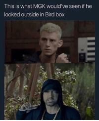 "Eminem, Friends, and Memes: This is what MGK would've seen if he  looked outside in Bird box 😂😂 Have you guys seen birdbox on netflix yet? Is eminem what machinegunkelly would've seen if he saw ""it"" ❓ ➡️DM Your friends ➡️Follow @bars"